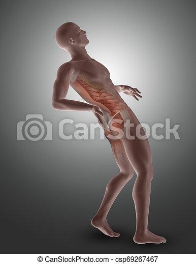 muscles, figure, dos, mis valeur, mâle, 3d - csp69267467