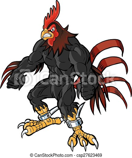 muscular rooster semi realistic head - csp27623469