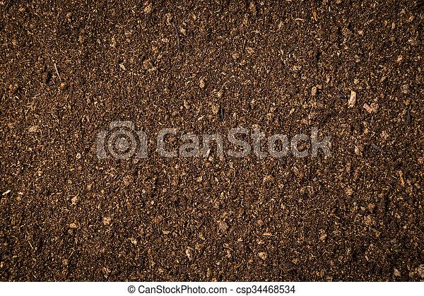 Cierren el suelo, musgo, fondo sucio y textura - csp34468534