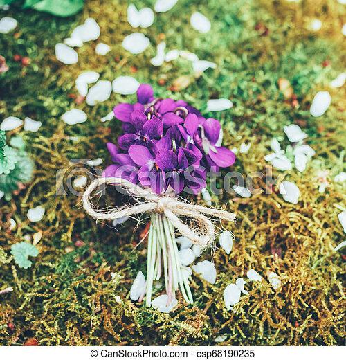 Un ramo antiguo de flores de bosque de violetas en el fondo del musgo, de primera vista - csp68190235