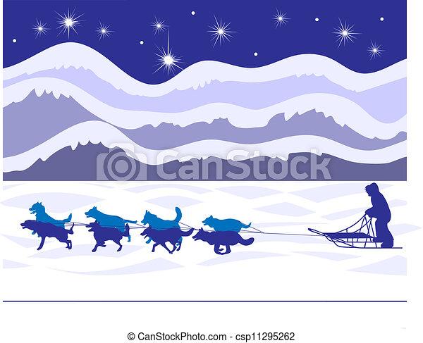 musher, lumière étoiles, chiens traîneau - csp11295262