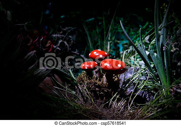 Mushroom. Fantasy Glowing Mushrooms in mystery dark forest close-up. Amanita muscaria, Fly Agaric in moss in forest. Magic mushrooms background - csp57618541