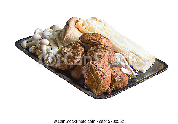 mushroom on the white background - csp45708562