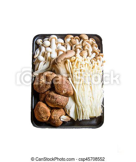 mushroom on the white background - csp45708552