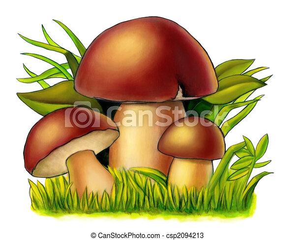 Mushrooms - csp2094213
