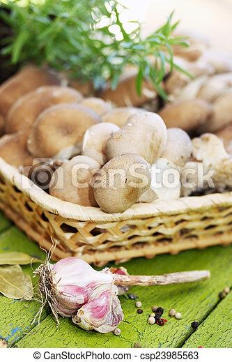 mushrooms in a wicker basket - csp23985563