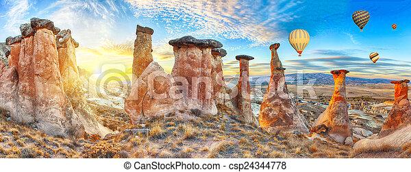 Mushrooms - csp24344778