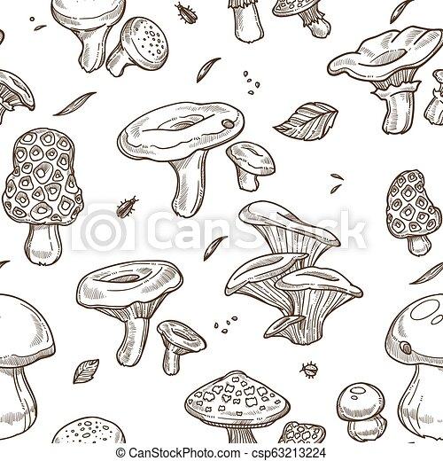 Mushrooms sketch seamless pattern. Vector edible illustration - csp63213224