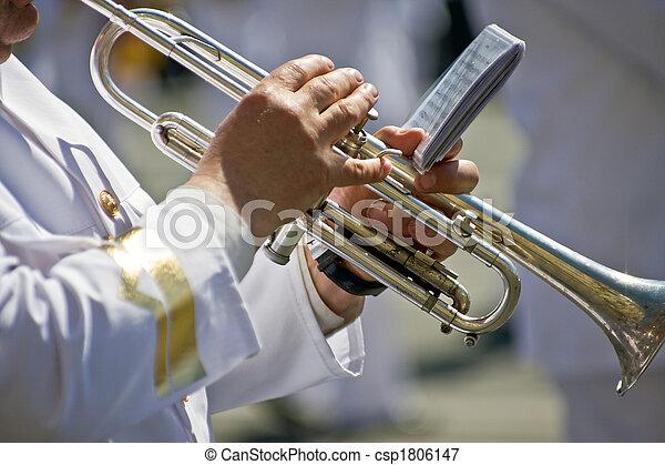 Musician - csp1806147