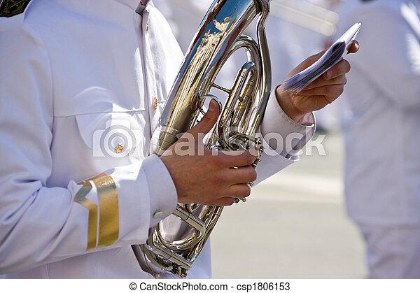 Musician - csp1806153