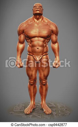 Muskel mann figur front ansicht Stock Illustrationen. 159 Muskel ...