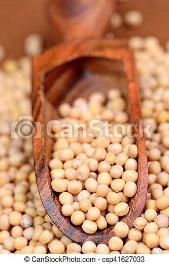 Mustard seeds in a scoop - csp41627033