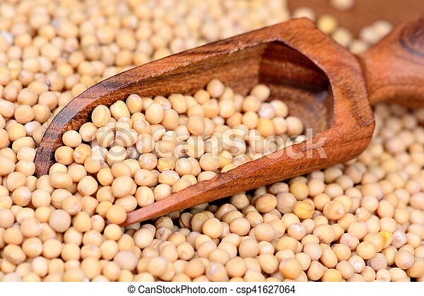Mustard seeds in a wooden scoop - csp41627064