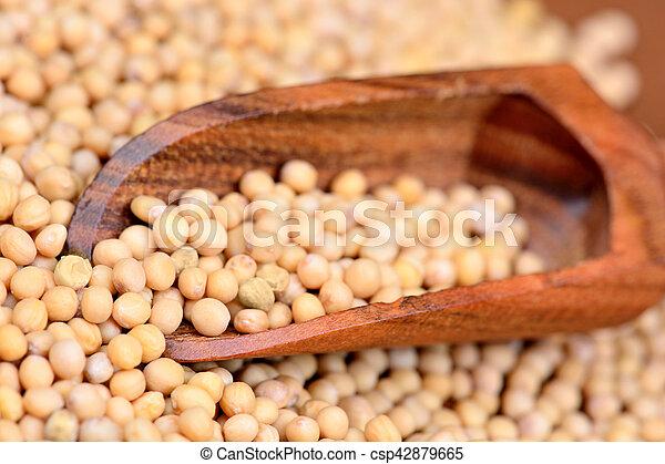 Mustard seeds in a wooden scoop - csp42879665