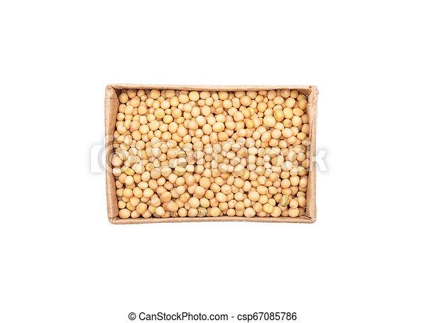 Mustard seeds in carton on white background - csp67085786