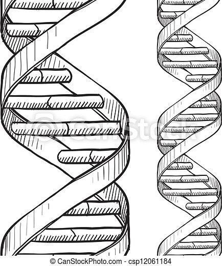 Nahmlose DNA Doppelhelixmuster - csp12061184