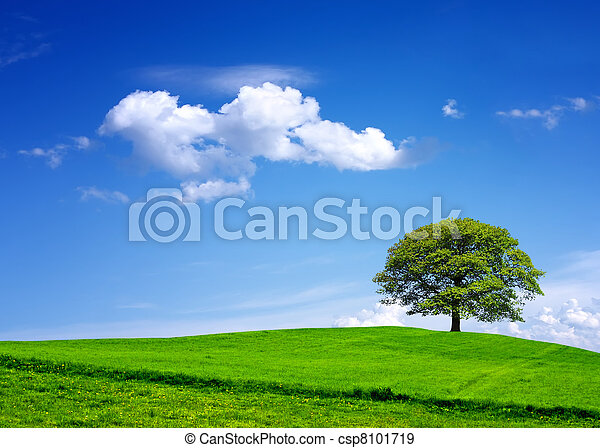 My environment - csp8101719