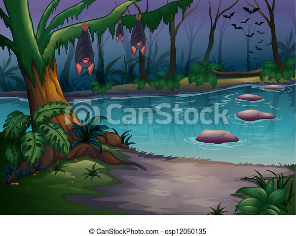Mysterious woods and a river - csp12050135