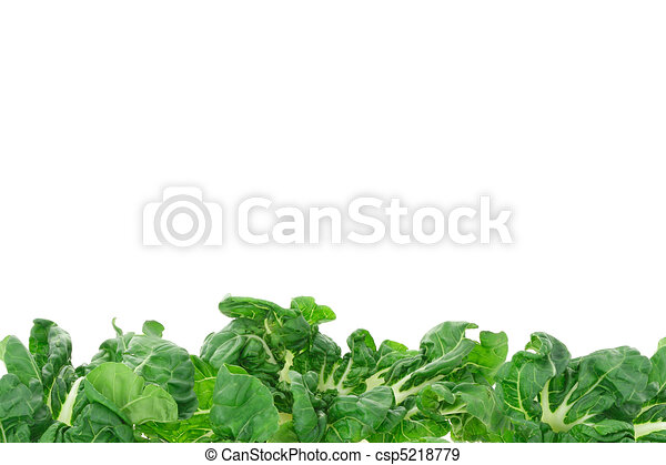 növényi, zöld, határ - csp5218779