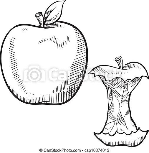 Esbozo de manzana y manzana - csp10374013