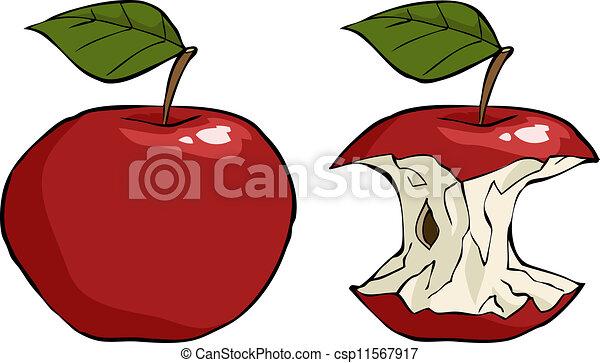 El núcleo de manzana - csp11567917