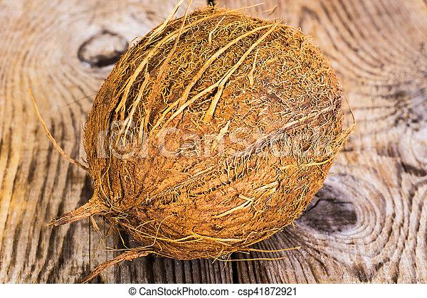 nagy, kókuszdió, érett, barna - csp41872921