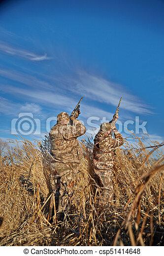 napos, vadászok, ég, feláll, vízi madár, célzás, nap - csp51414648