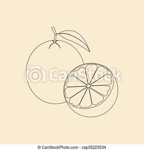 icono de fruta naranja - csp35223534