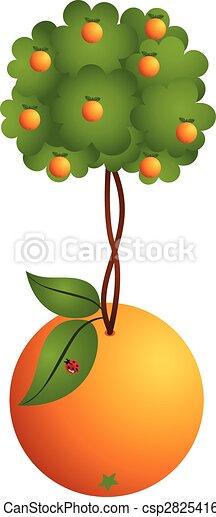 Naranja en naranja - csp28254164