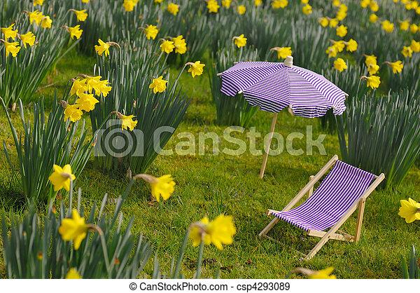 El prado de Daffodil - csp4293089