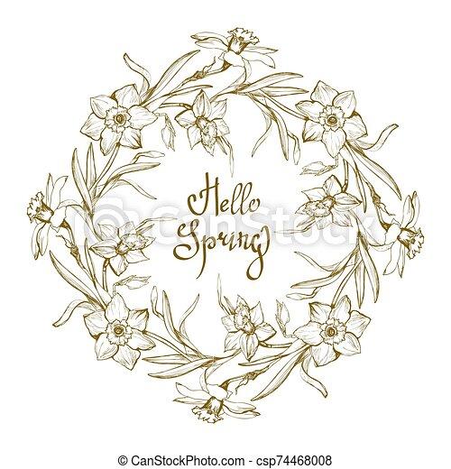 narcissus., ornamentale, fiori, disegnato, cornice, mano, floreale - csp74468008