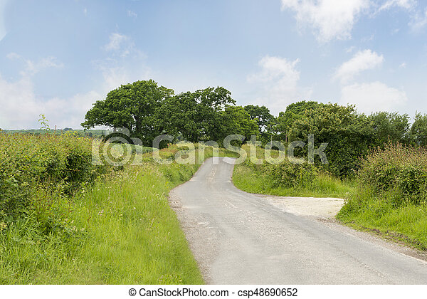 Narrow Country Road with Trees on a Bright Sunny Day - csp48690652
