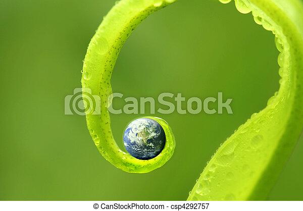 nasa., 地球, 性质, 礼貌, visibleearth., 绿色的地图, 概念, gov, 照片 - csp4292757