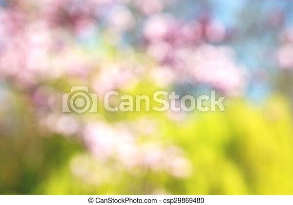 Natürlich, blüte, park, baum, london, weisse blumen. Rosa,... Bilder ...