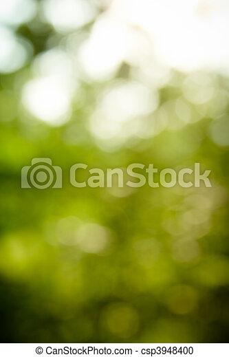 natürlich, fokus, (bokeh), grüner wald, hintergrund, heraus - csp3948400