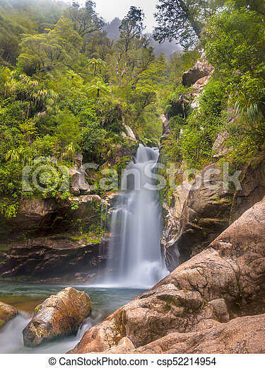 Native Forest With Waterfall New Zealand Native Forest With