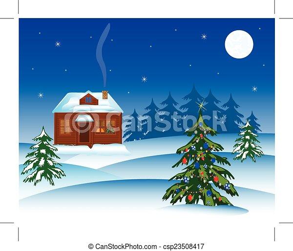 Natty fir tree in winter - csp23508417