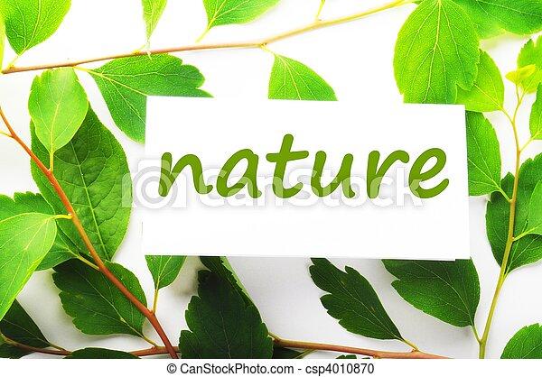 natur - csp4010870