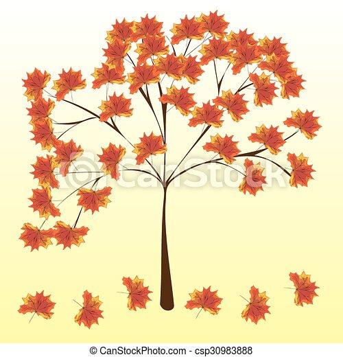 natura, foglie, albero, autunno, fondo, acero - csp30983888