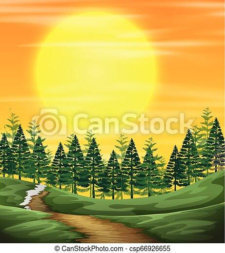 natura, zachód słońca, prospekt - csp66926655