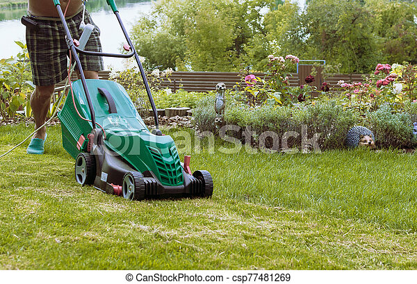 Natural background A man mows a lawn mower with a green lawn in his own garden near a flower garden in summer. Side view, horizontal. The concept of design, nature and landscaping. - csp77481269