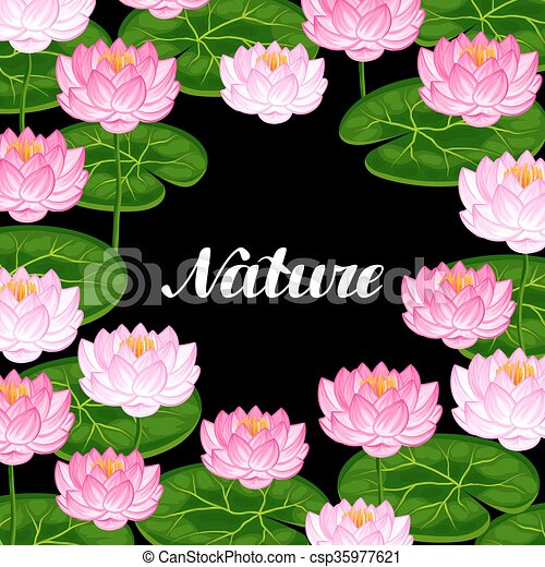 Natural background with lotus flowers and leaves natural natural background with lotus flowers and leaves csp35977621 mightylinksfo