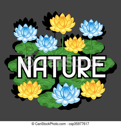 Natural background with lotus flowers and leaves image for natural background with lotus flowers and leaves image for design on t shirts mightylinksfo