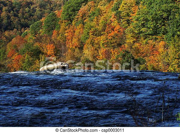Natural Colors - csp0003011