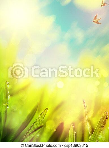 natural, extractos, plano de fondo, primavera - csp18903815