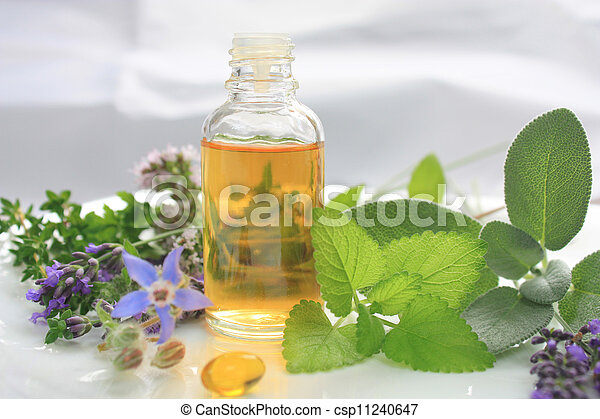 Natural fresh herbs - csp11240647