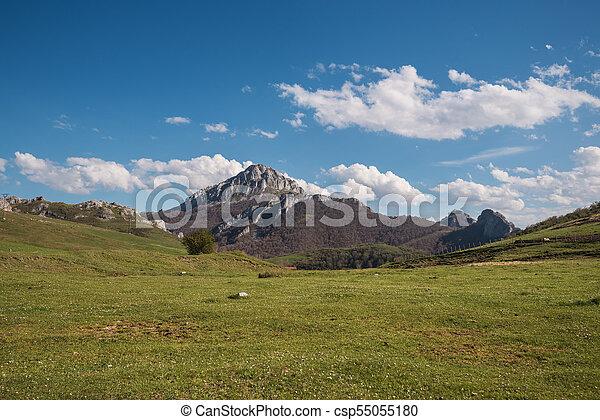 Natural landscape in Palencia mountains, Castilla y Leon, Spain. - csp55055180