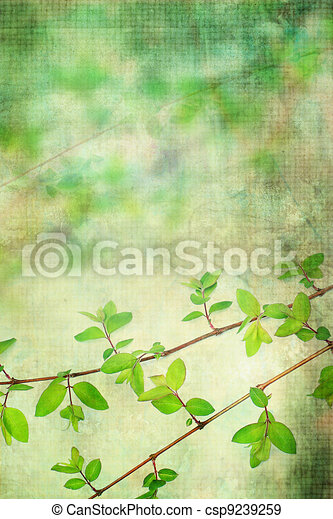Natural leaves grunge beautiful, artistic background  - csp9239259