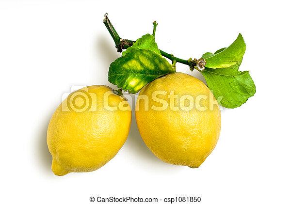 natural lemons - csp1081850