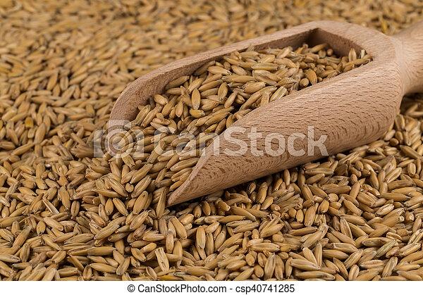 natural oat grains background, closeup - csp40741285